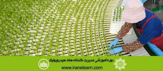 دوره آموزشی مدیریت گلخانه های هیدروپونیک Hydroponic Greenhouse Management E-learningB