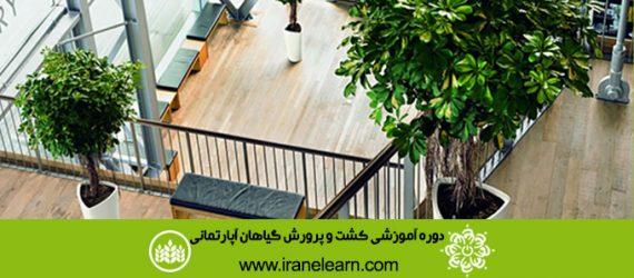 دوره آموزشی کشت و پرورش گیاهان آپارتمانی Cultivating and Growing up Apartment Plants E-learningA