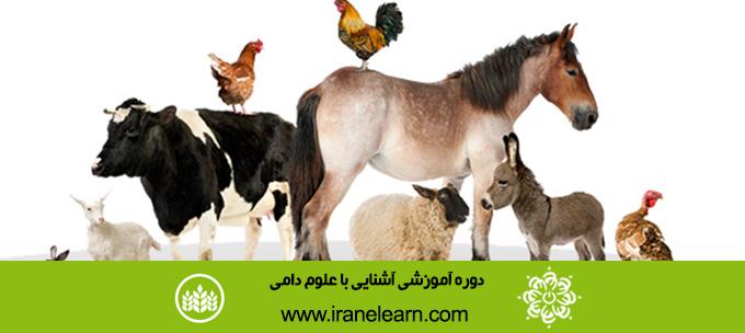 دوره آموزشی آشنایی با علوم دامی  Introduction to livestock Sciences E-learningB
