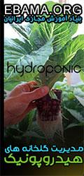 آموزش مجازی گلخانه هیدروپونیک