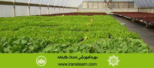 دوره آموزشی احداث گلخانه Greenhouse Construction E-learningB