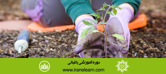 دوره آموزشی باغبانی