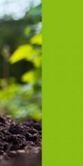 آموزش مجازی اصول باغداری