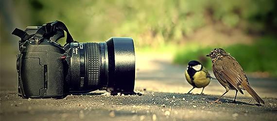 دوره آموزشی عکاسی دیجیتال