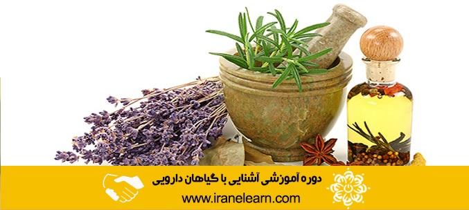دوره آموزشی آشنایی با گیاهان دارویی