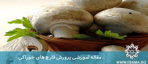 پرورش قارچ های خوراکی