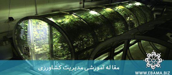 اصول کشاورزی ارگانیک و راهبرد توسعه کشاورزی ارگانیک در ایران