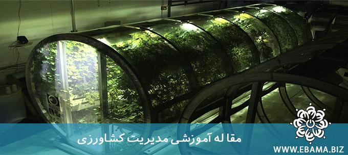 مدیریت کشاورزی