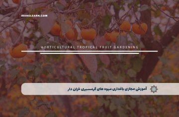 باغداری میوه های گرمسیری خزان دار