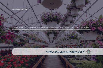 مدیریت پرورش گل در گلخانه