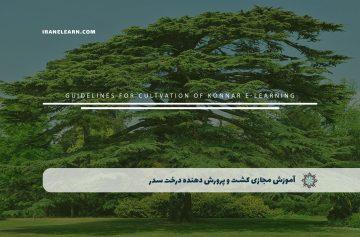 کشت و پرورش دهنده درخت سدر
