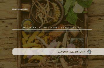 بازاریاب گیاهان دارویی