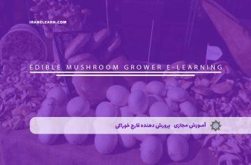پرورش دهنده قارچ خوراکی