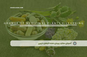 پرورش دهنده گیاهان دارویی