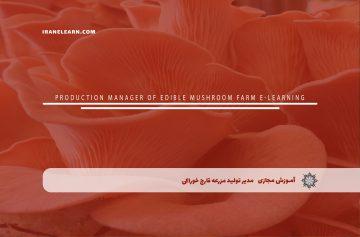 مدیر تولید مزرعه قارچ خوراکی