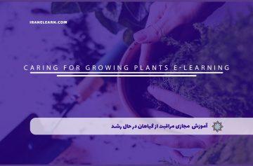 مراقبت از گیاهان در حال رشد
